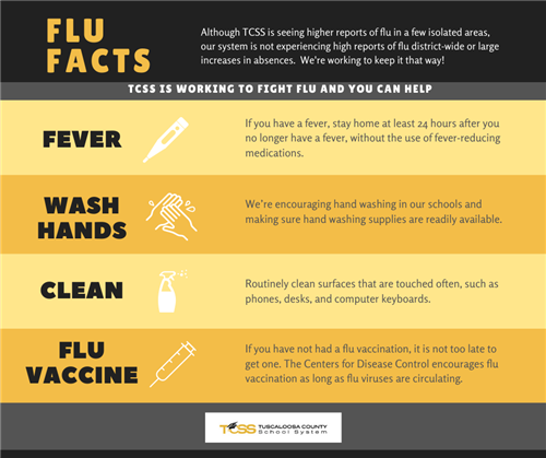 Flu Facts 2020