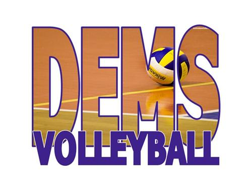 DEMS Vollyball